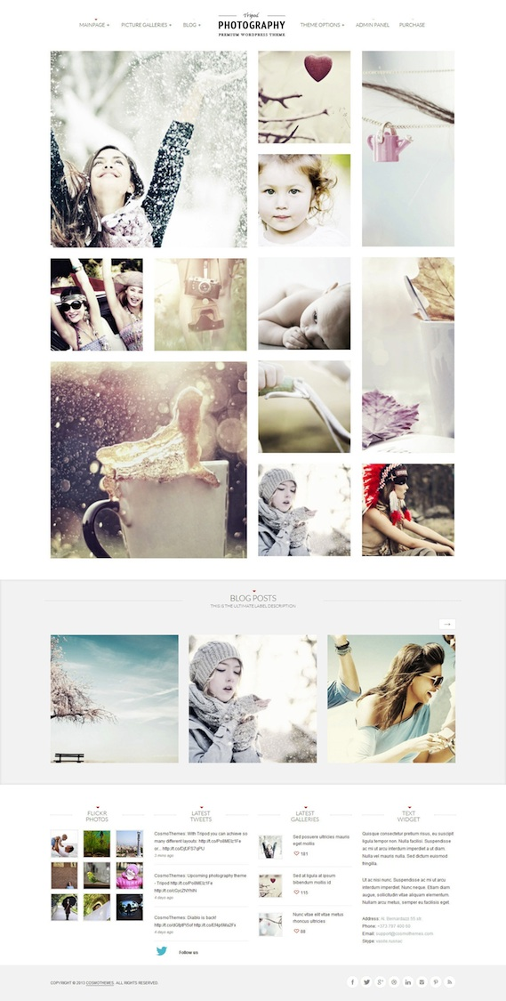 Responsive Wedding Photography WordPress Theme - Tripod