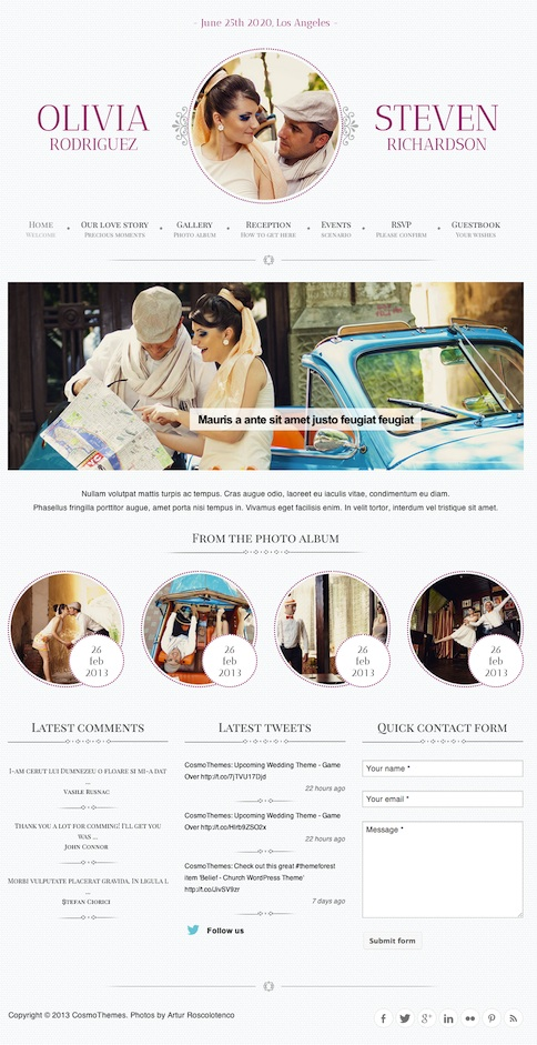 Responsive Wedding WordPress Theme with RSVP module - Game Over